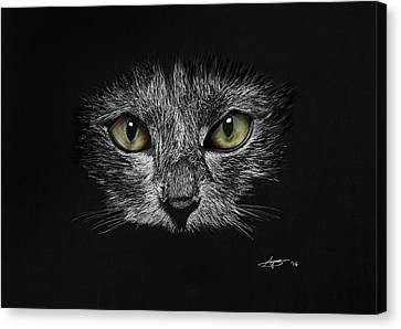 Cat's Eyes Canvas Print by Robert Bateman