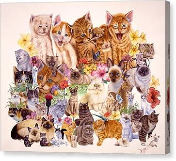 Cats Canvas Print by John YATO