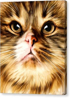 Portraits Of Cats Canvas Print - Cat's Perception by Lourry Legarde