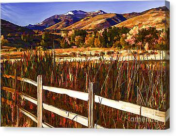 Cattails And Color-2 Canvas Print