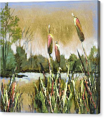 Cattails At Forest Park Canvas Print by Vic  Mastis