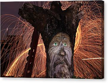 Cattelacs Chainsaw Art 5 Canvas Print by Andrew Nourse