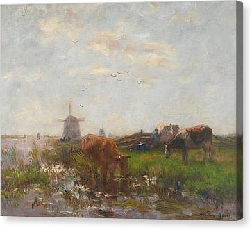 Cattle Grazing Canvas Print by Willem Maris