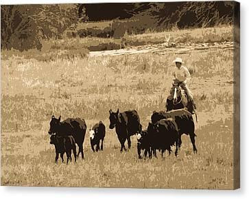 Cattle Round Up Sepia Canvas Print by Athena Mckinzie
