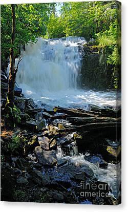 Cattyman Falls 2 Canvas Print by Larry Ricker