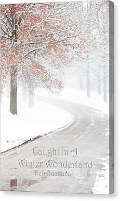 Caught In A Winter Wonderland Canvas Print