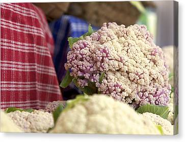 Cauliflower Canvas Print by Terry Horstman