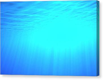 Caustic Rays Below The Sea Surface Canvas Print by David Parker