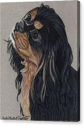 Cavalier King Charles Spaniel Canvas Print by Anita Putman