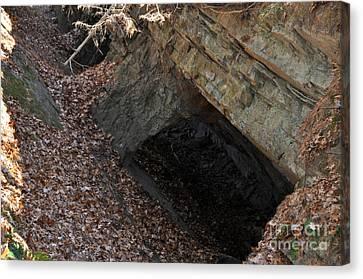 Cave Entrance Canvas Print
