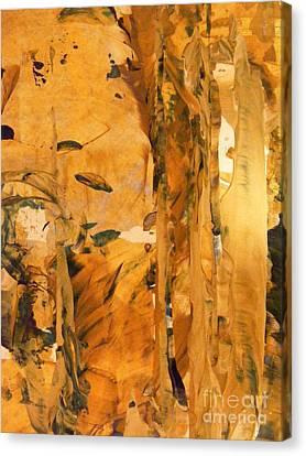 Cave Of Gold Canvas Print by Nancy Kane Chapman