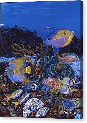 Cayman Reef 1 Re0021 Canvas Print by Carey Chen