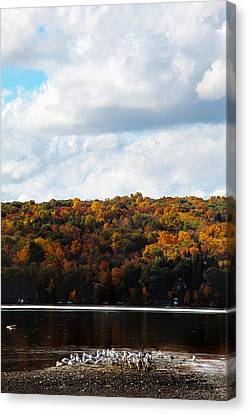 Canvas Print featuring the photograph Cayuga Lake In Colorful Fall Ithaca New York  by Paul Ge
