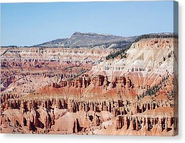 Cedar Breaks Up Close 3 Canvas Print by Debra Thompson