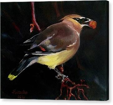 Cedar Wax Wing Canvas Print