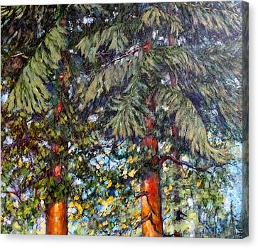 Cedars Canvas Print
