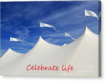 Celebrate Life Canvas Print by John Van Decker
