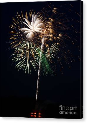 Canvas Print featuring the photograph Celebration by Dale Nelson