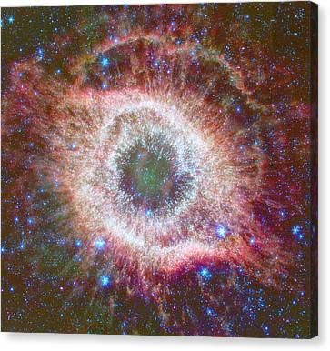 Celestial Fireworks Canvas Print by Georgia Fowler