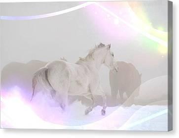 Celestial Horses Canvas Print
