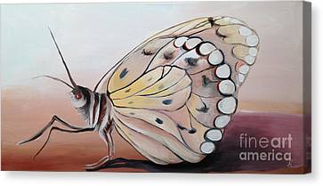 Celine's Butterfly Canvas Print