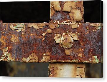 Canvas Print featuring the photograph Cell Strapping by Fran Riley