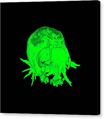 Cell Transfection Canvas Print by Dr. Chris Henstridge