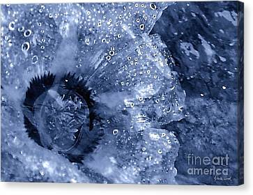Canvas Print featuring the photograph Cellophane Flower- Sapphire by Darla Wood