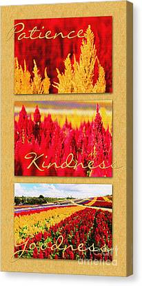 Celosia With Patience Kindness Goodness Canvas Print by Beverly Claire Kaiya