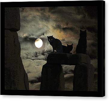 Celtic Nights Canvas Print by I'ina Van Lawick