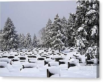 Cemetary Snow Canvas Print by Douglas Stucky