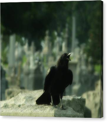 Cemetery Corvidae As It Caws Canvas Print by Gothicrow Images