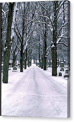 Cemetery In Snow Canvas Print by Gail Maloney