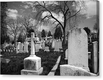 Cemetery Solitude Canvas Print by Jennifer Ancker