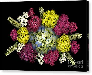 Centerpiece Canvas Print by Dale Hoopingarner