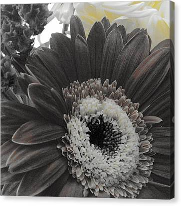 Canvas Print featuring the photograph Centerpiece by Photographic Arts And Design Studio