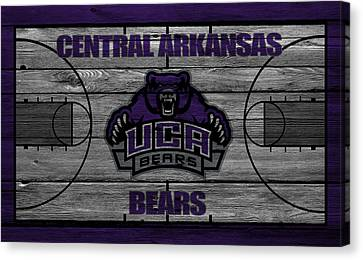 Central Arkansas Bears Canvas Print
