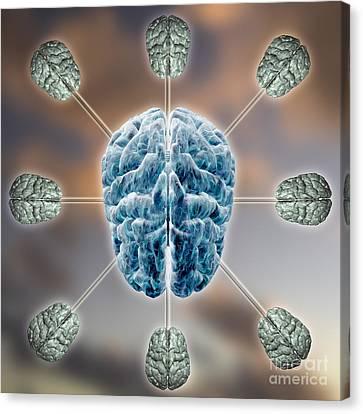 Central Brain Canvas Print by Mike Agliolo