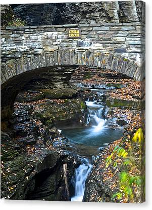 Cavern Canvas Print - Central Cascade by Frozen in Time Fine Art Photography