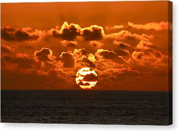 Central Coast Sunset Canvas Print by Amelia Racca