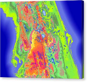 Central Florida Map Art Canvas Print by Paul Hein