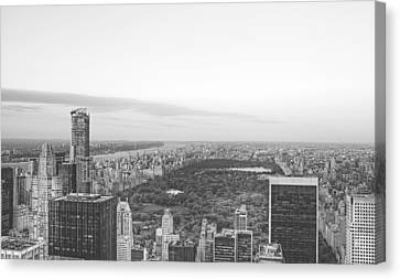 Central Park At Dusk Canvas Print by Ariane Moshayedi