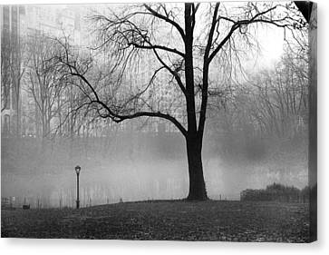 Canvas Print featuring the photograph Central Park Fog by Dave Beckerman