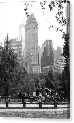 Central Park Canvas Print by Kristi Jacobsen