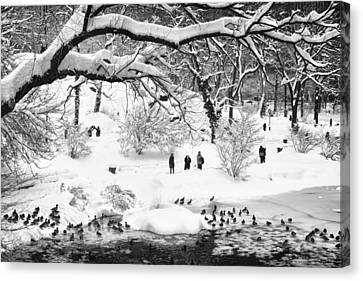 Canvas Print featuring the photograph Central Park Lake Blizzard by Dave Beckerman