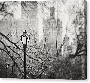 Central Park Lamppost In New York City Canvas Print by Lisa Russo