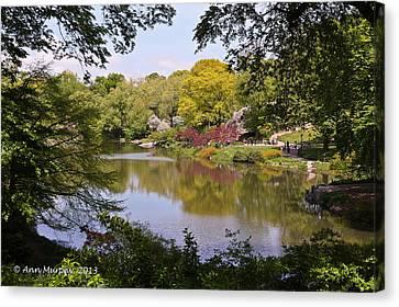Canvas Print featuring the photograph Central Park Landscape by Ann Murphy