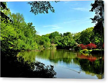 Central Park No. 2 Canvas Print