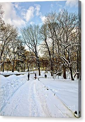 Central Park Snow Storm One Day Later2 Canvas Print by Madeline Ellis