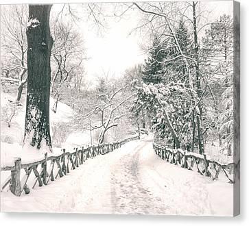 Central Park Winter Landscape Canvas Print by Vivienne Gucwa